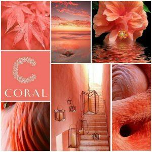 Immagini di ispirazione per il Living Coral
